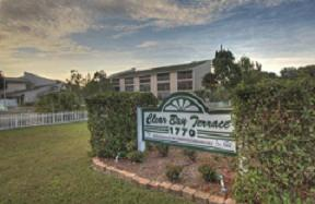 picture of Volunteers Of America (florida) - Clear Bay Terrace Apartments (for Seniors)