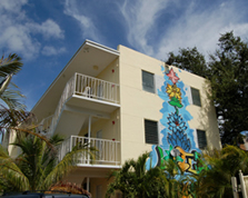 picture of The Lotus House Miami - Transitional Housing